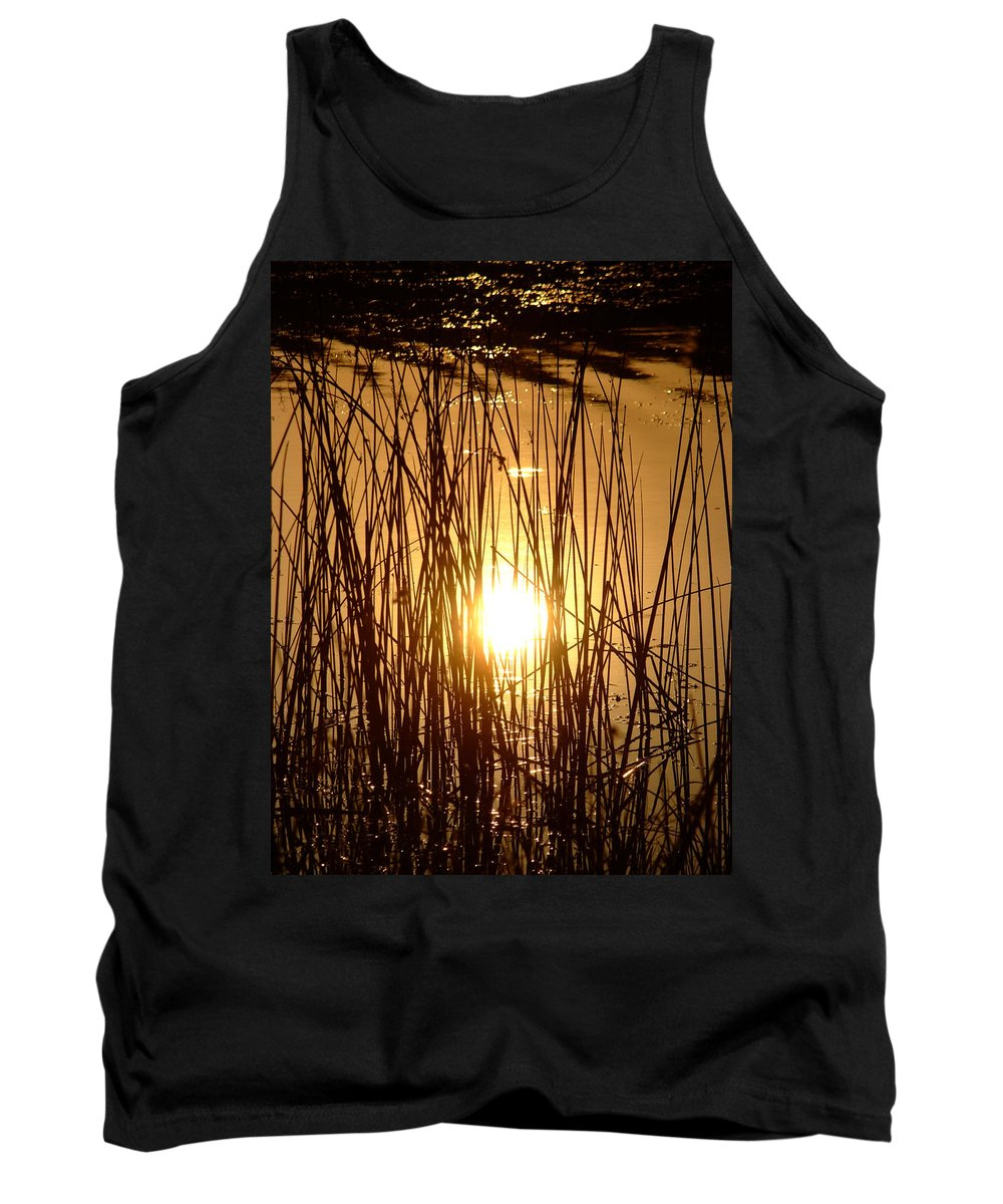 Landscape Tank Top featuring the photograph Evening Sunset Over Water by Cliff Norton