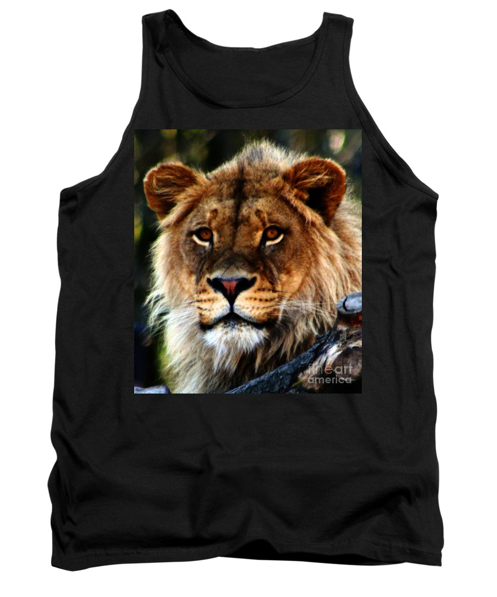 Lion Tank Top featuring the photograph Eyes Of The Young King by Nick Gustafson