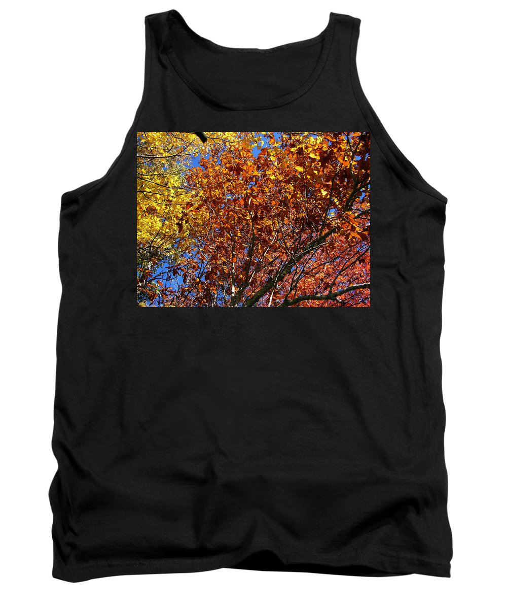 Fall Tank Top featuring the photograph Fall by Flavia Westerwelle