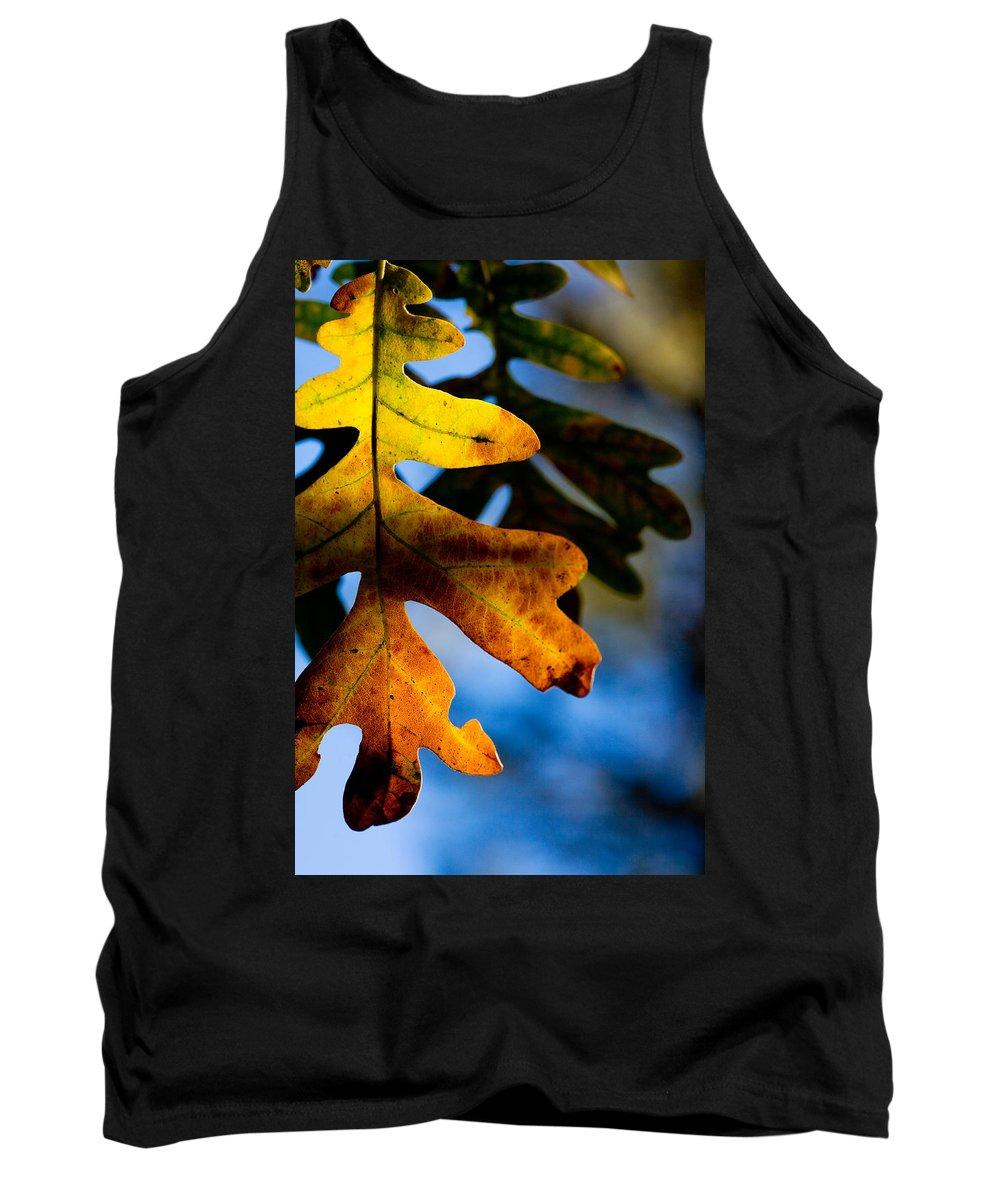 Leaf Tank Top featuring the photograph Fall Foliage Leaf Near Ruidoso Nm by Matt Suess