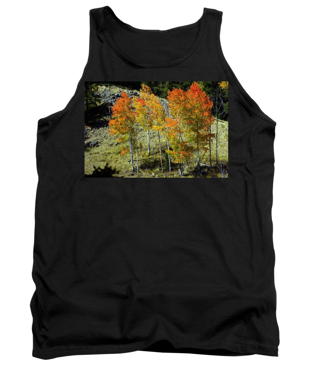 Tank Top featuring the photograph Fall In Colorado by Marty Koch