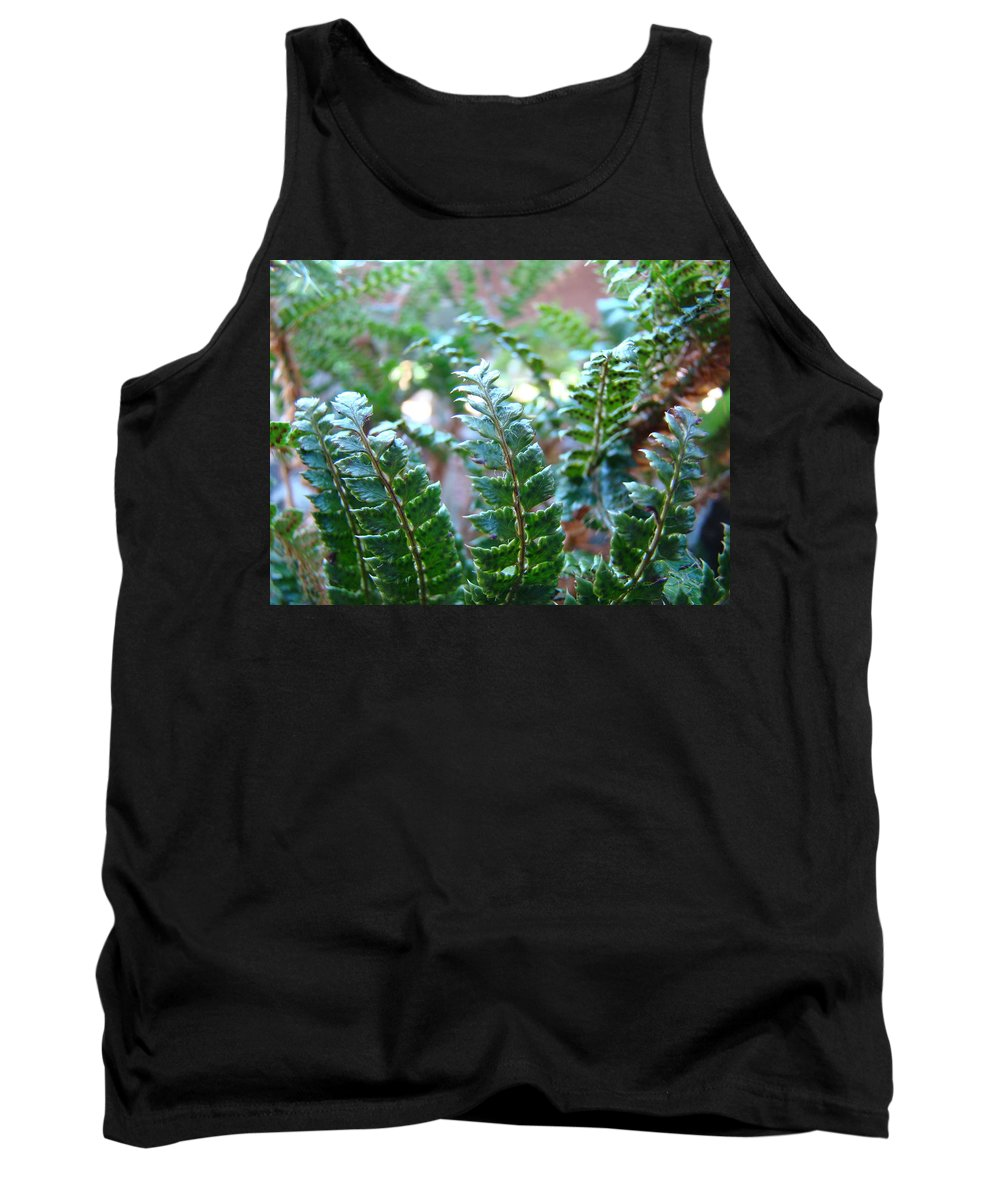 Fern Tank Top featuring the photograph Fern Art Prints Green Sunlit Forest Ferns Giclee Baslee Troutman by Baslee Troutman