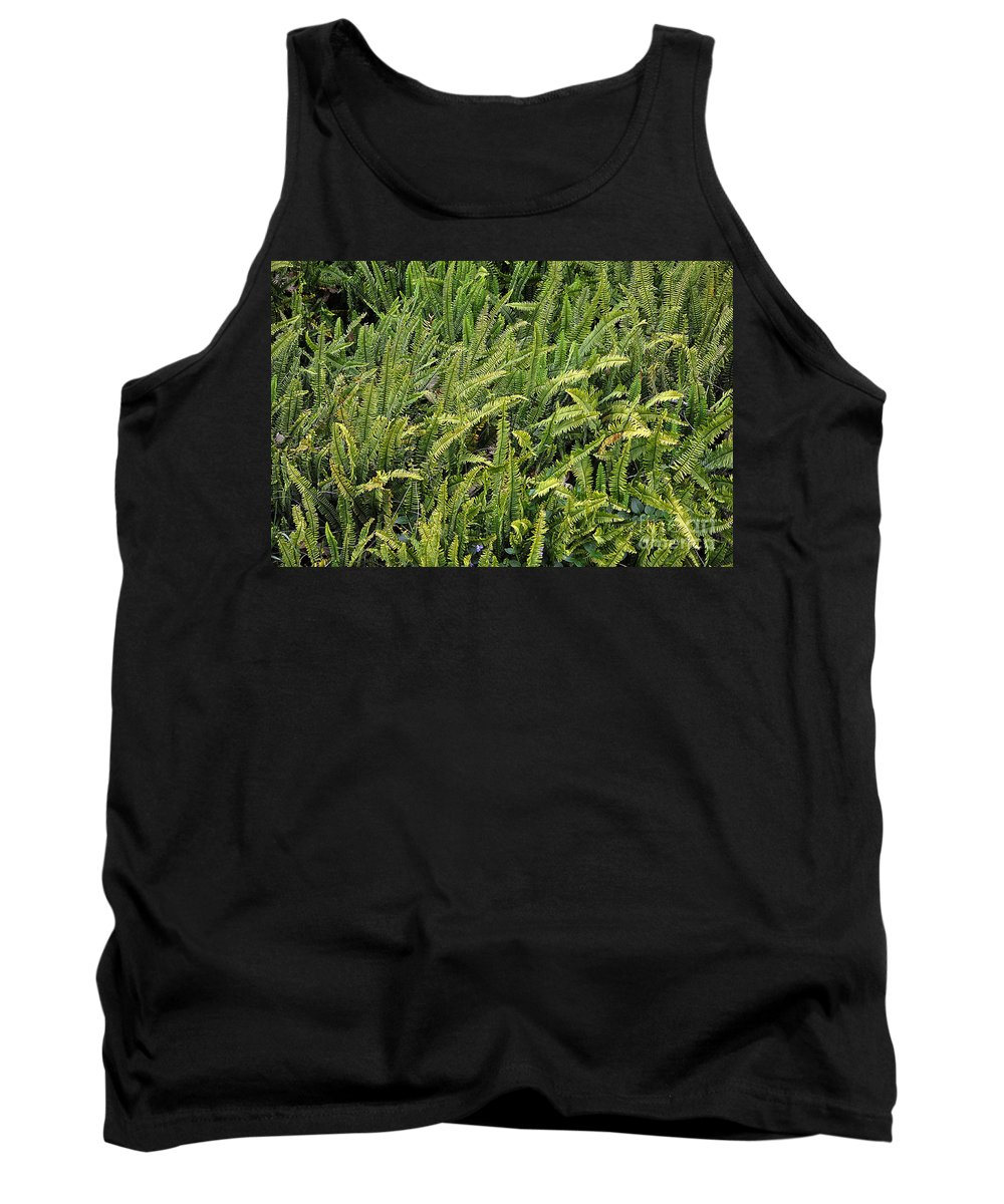 Clay Tank Top featuring the photograph Fern by Clayton Bruster