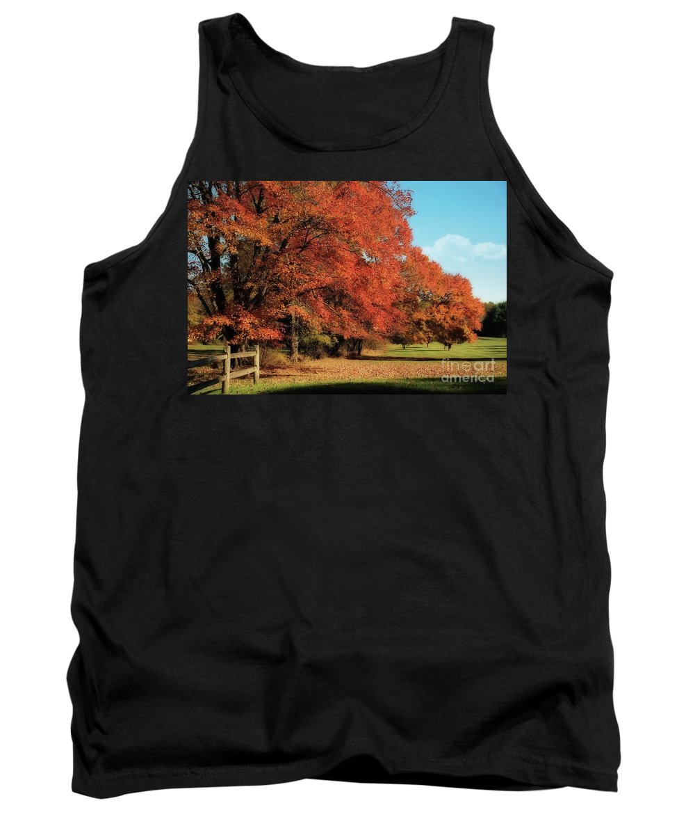Autumn Tank Top featuring the photograph Flame Trees by Lois Bryan
