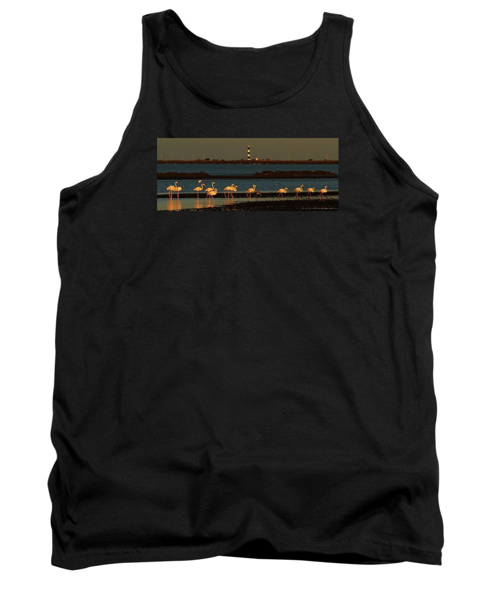 Camargue Tank Top featuring the photograph Flamingo Sunrise by Richard Patmore