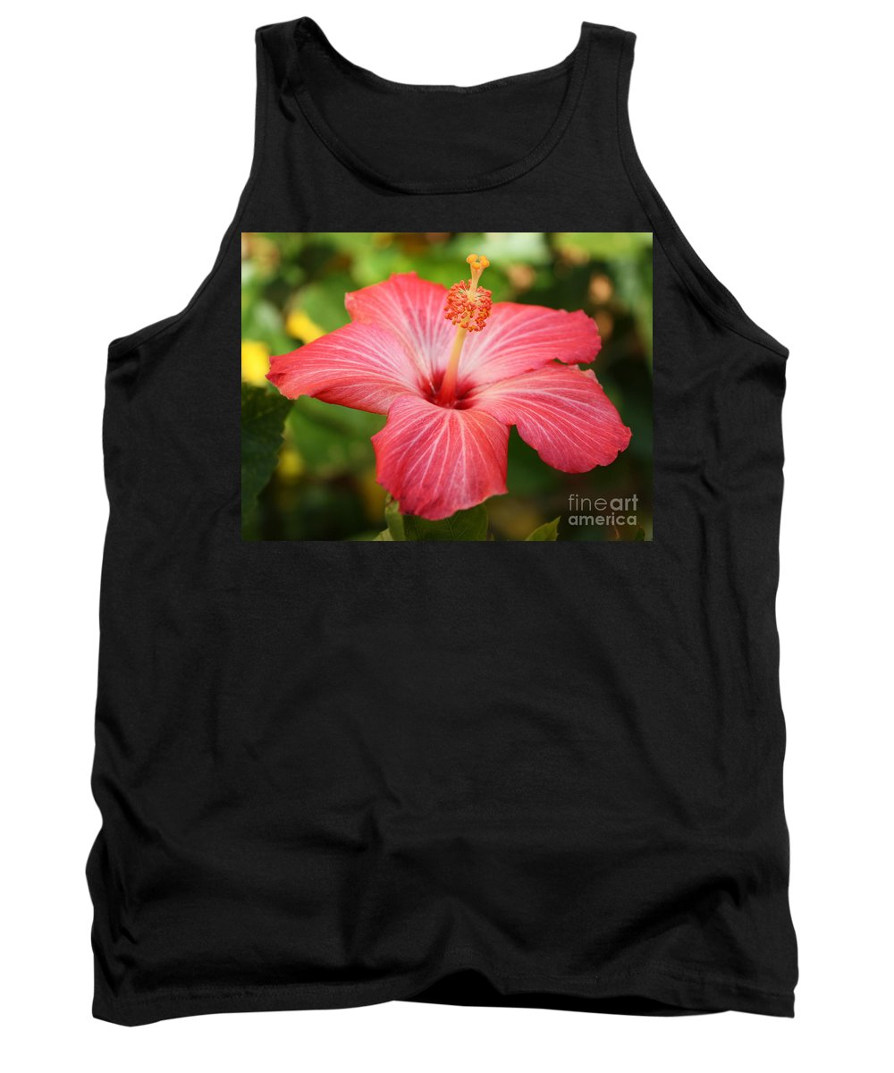 Pink Hibiscus Tank Top featuring the photograph Florida Hibiscus by Carol Groenen