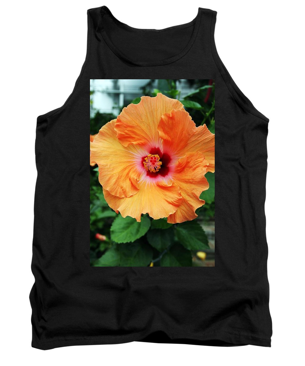 Color Tank Top featuring the photograph Flower Explosion2 by Bob Wantz