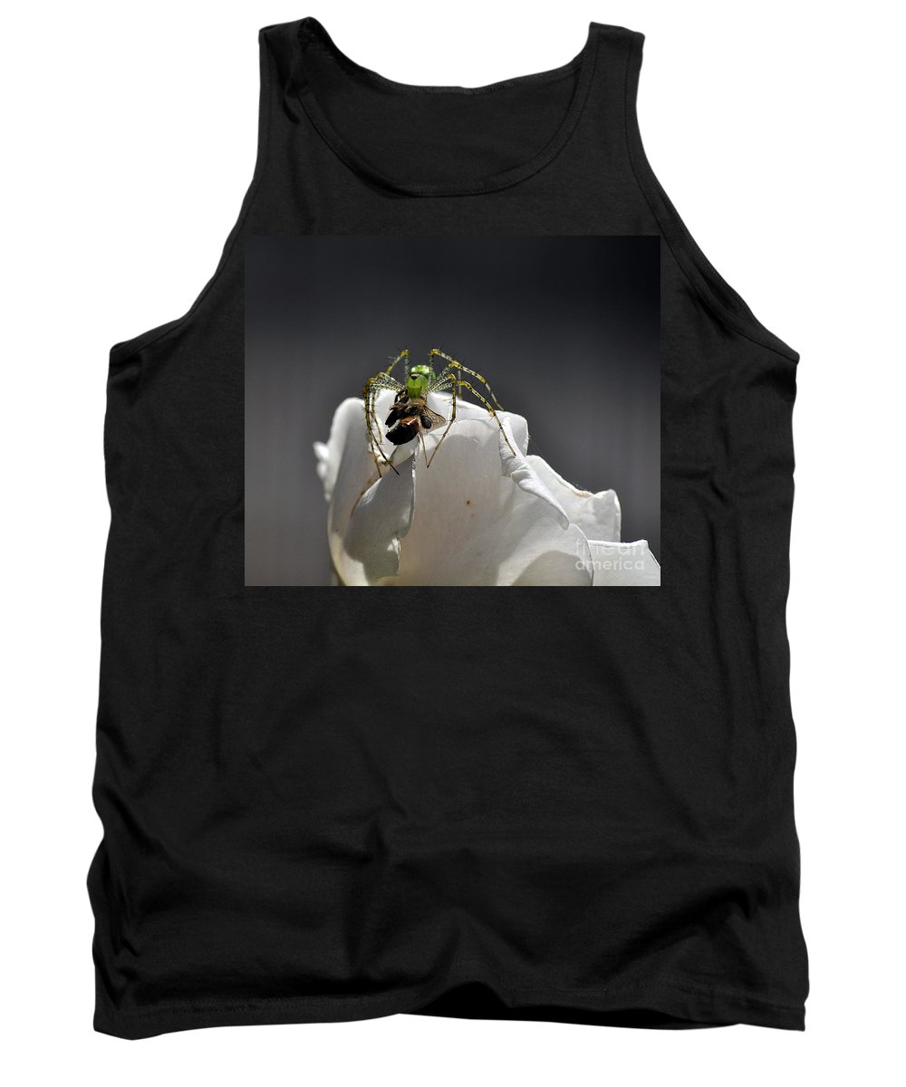 Clay Tank Top featuring the photograph Flys At The Picnic by Clayton Bruster