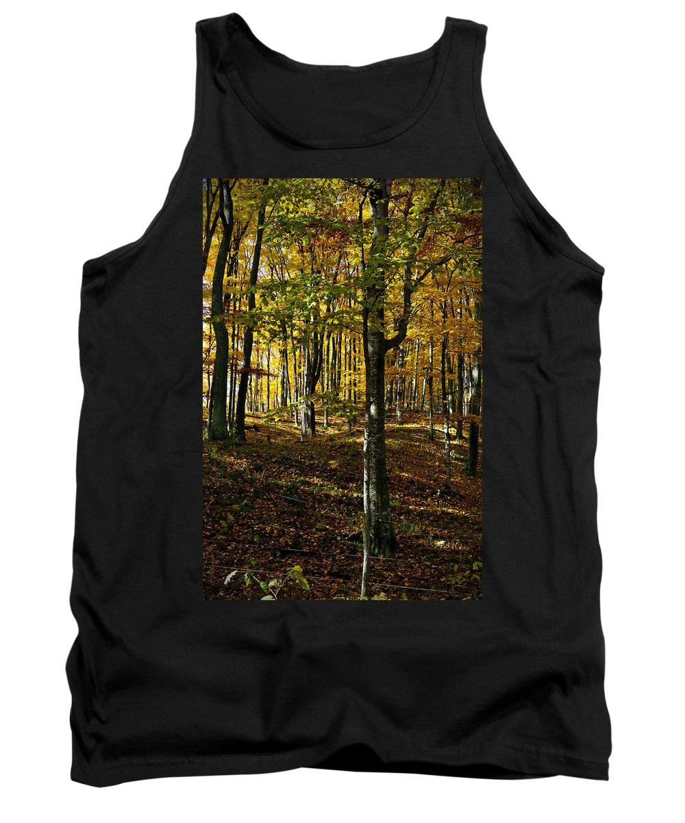 Trees Tank Top featuring the photograph Forest Floor Two by Tim Nyberg