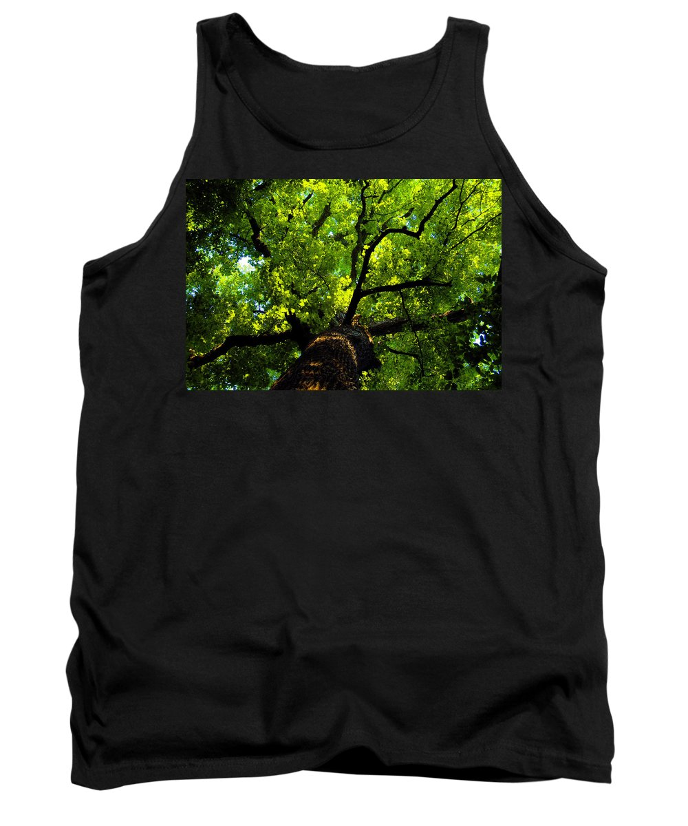 Forest Tank Top featuring the painting Forest Top by David Lee Thompson