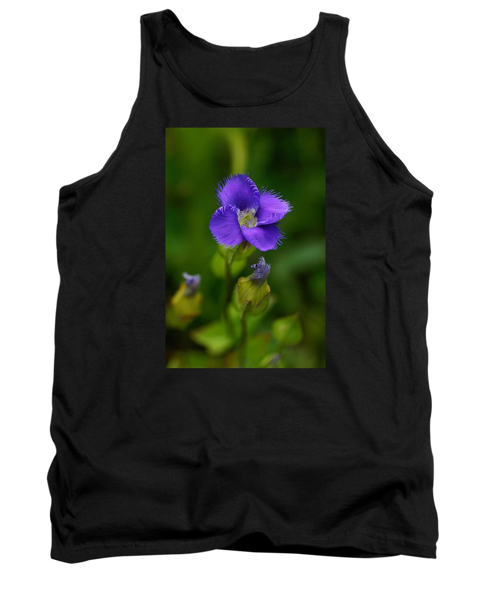 Wildflower Tank Top featuring the photograph Fringed Gentian by Bill Morgenstern