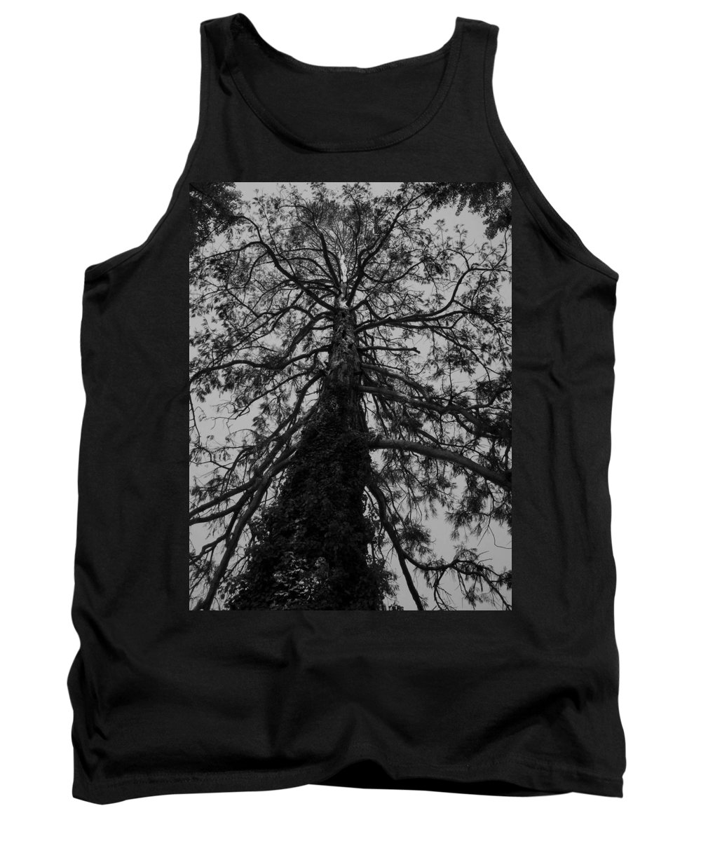 Nature Tank Top featuring the photograph Gnarly Tree by Juergen Weiss