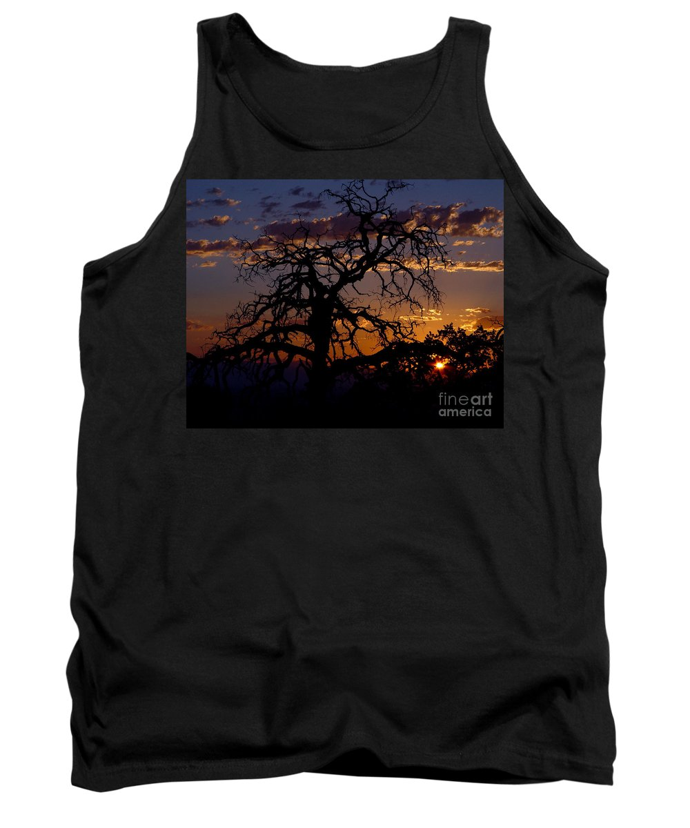 Sunset Tank Top featuring the photograph Golden Hour by Peter Piatt