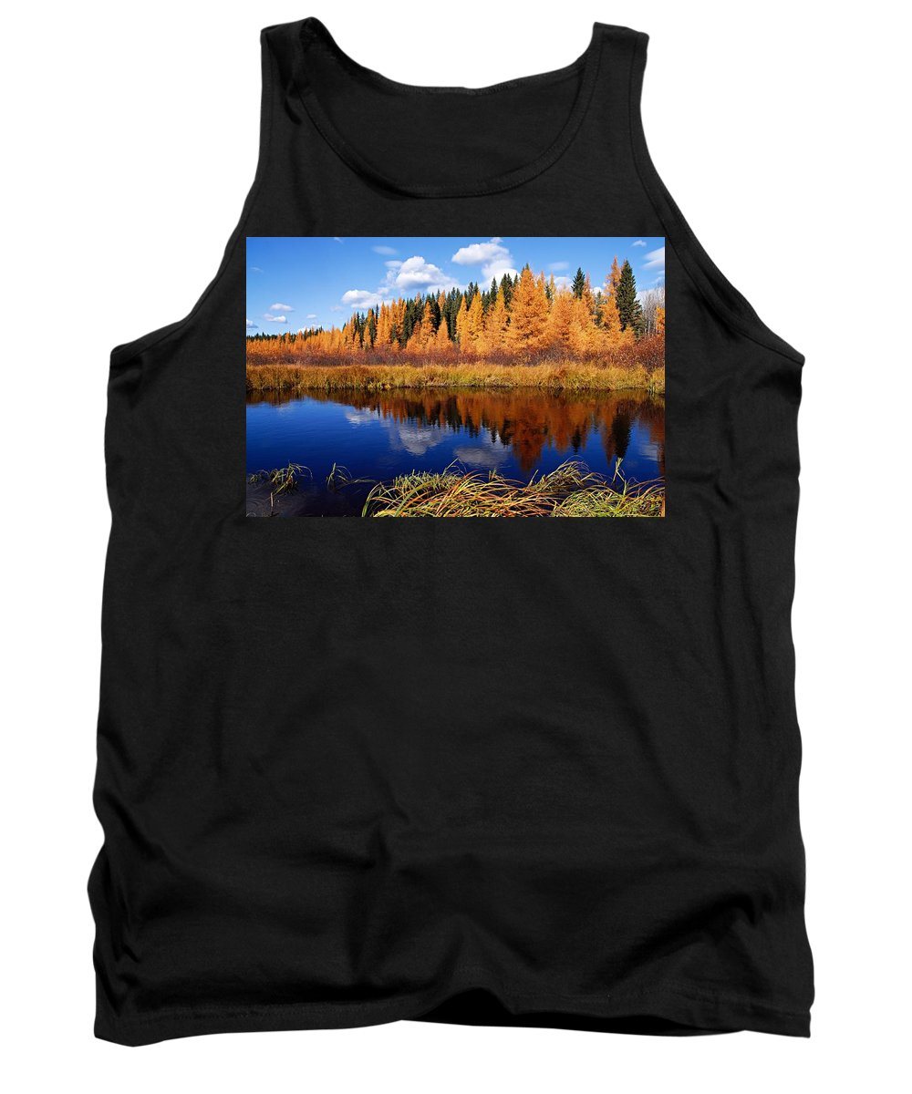 Spruce River Tank Top featuring the photograph Golden Tamaracks Along The Spruce River by Larry Ricker