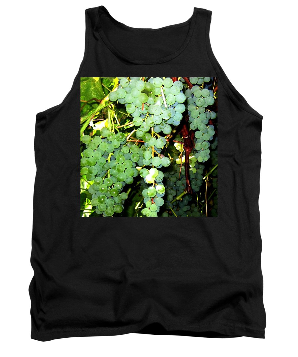 Grapes Tank Top featuring the photograph Grape Harvest by Will Borden
