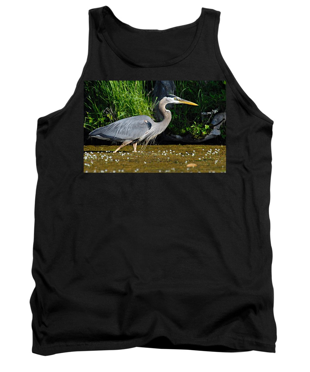 Great Blue Heron Tank Top featuring the photograph Great Blue Heron by Larry Ricker