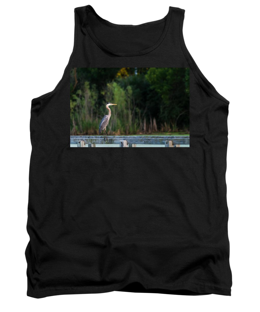 Great Blue Heron Tank Top featuring the photograph Great Blue Heron On A Handrail by Edward Peterson