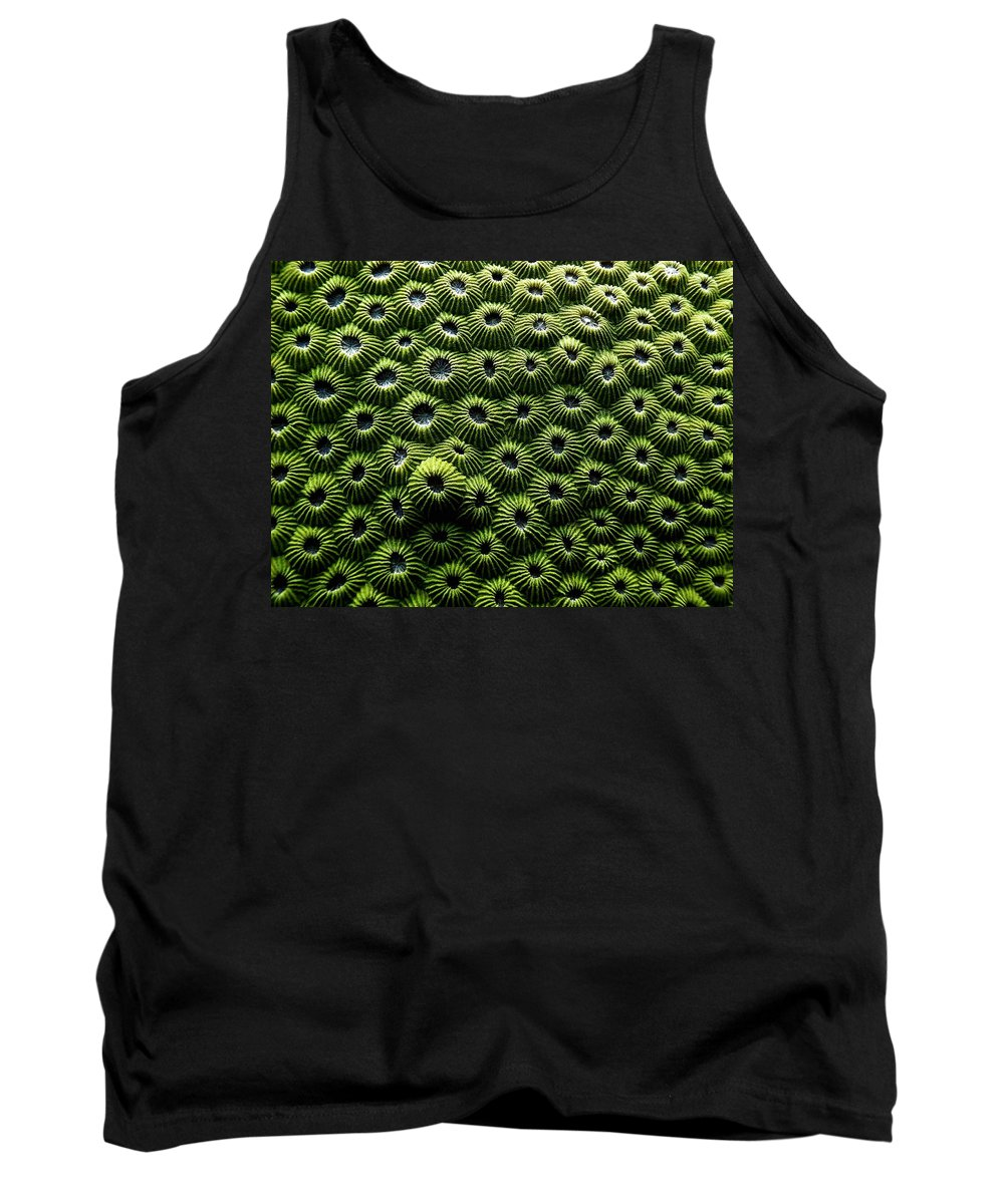 Coral Tank Top featuring the photograph Green Coral by Dragica Micki Fortuna