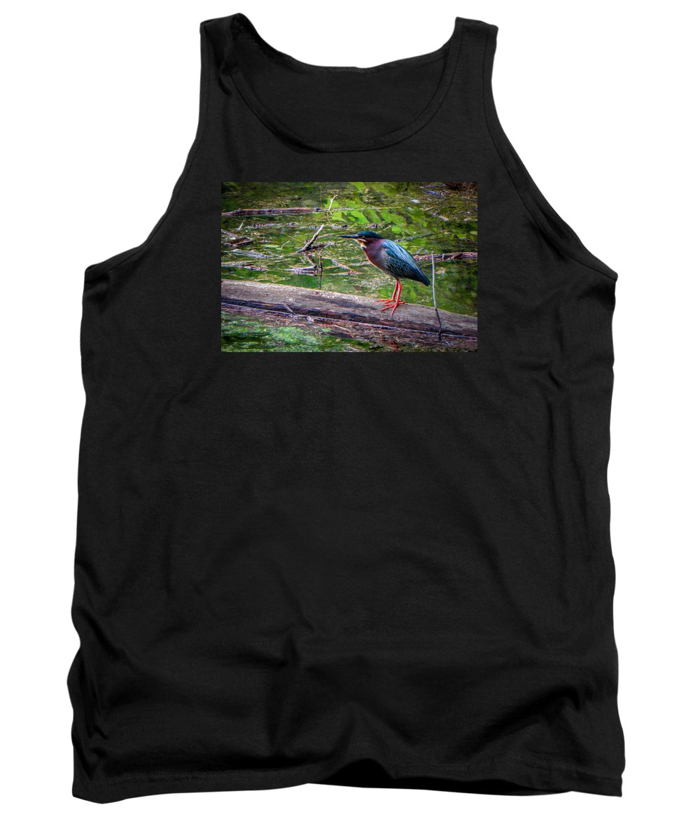 Heron Tank Top featuring the photograph Green Heron by Brent Costenbader