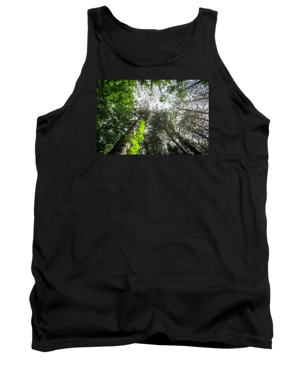 Trees Tank Top featuring the photograph Green To The Sky by Deborah Moran