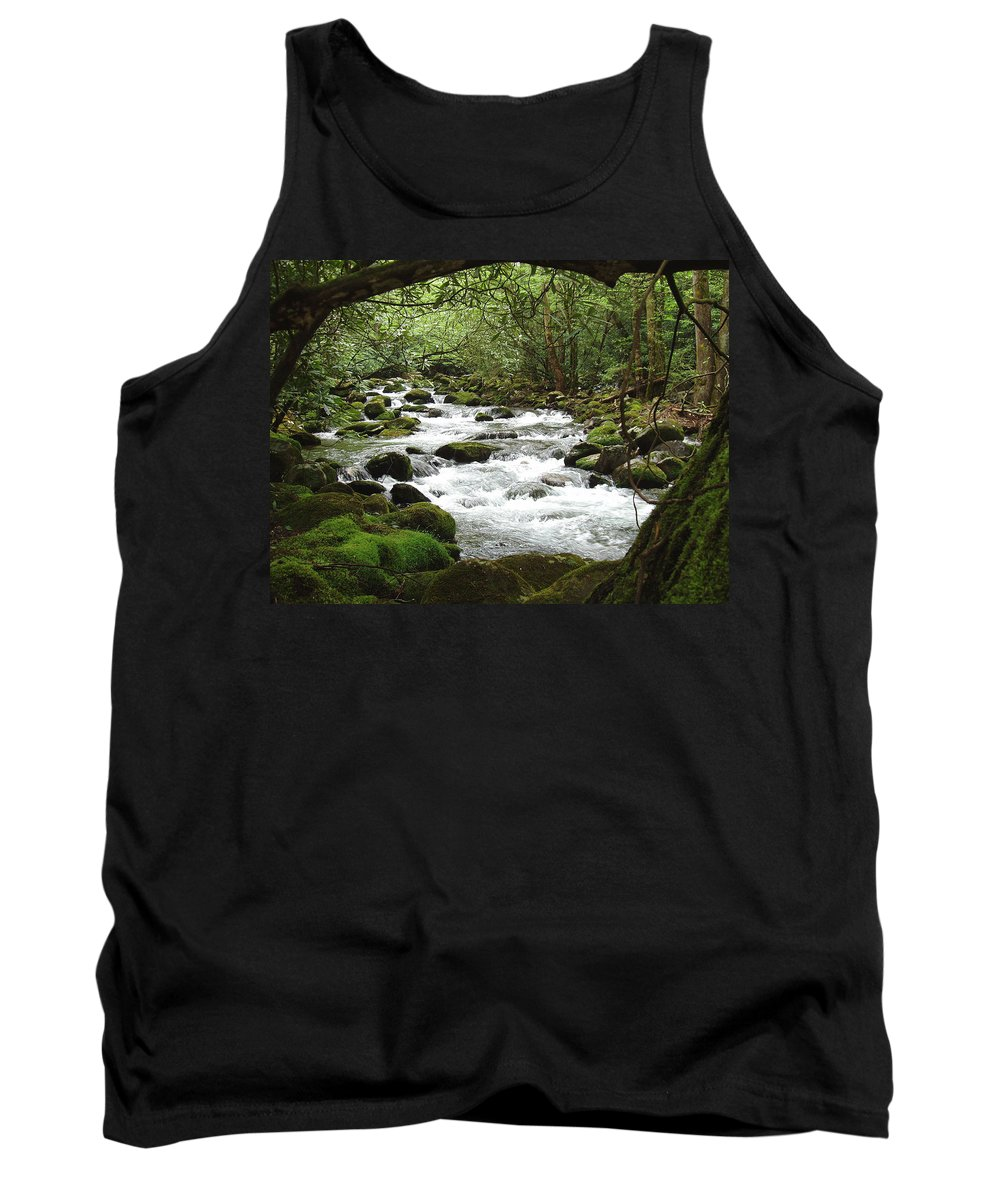 Smoky Mountains Tank Top featuring the photograph Greenbrier River Scene 2 by Nancy Mueller