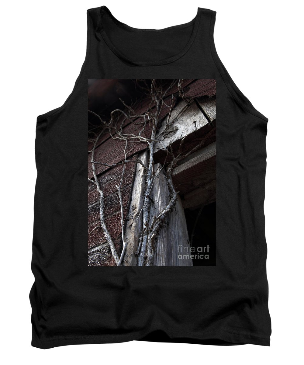 Broken Tank Top featuring the photograph Growth by Amanda Barcon