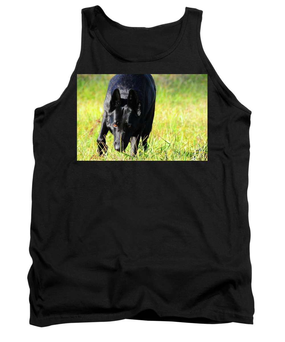 Dog Tank Top featuring the photograph Handy by Ginnie Lerch