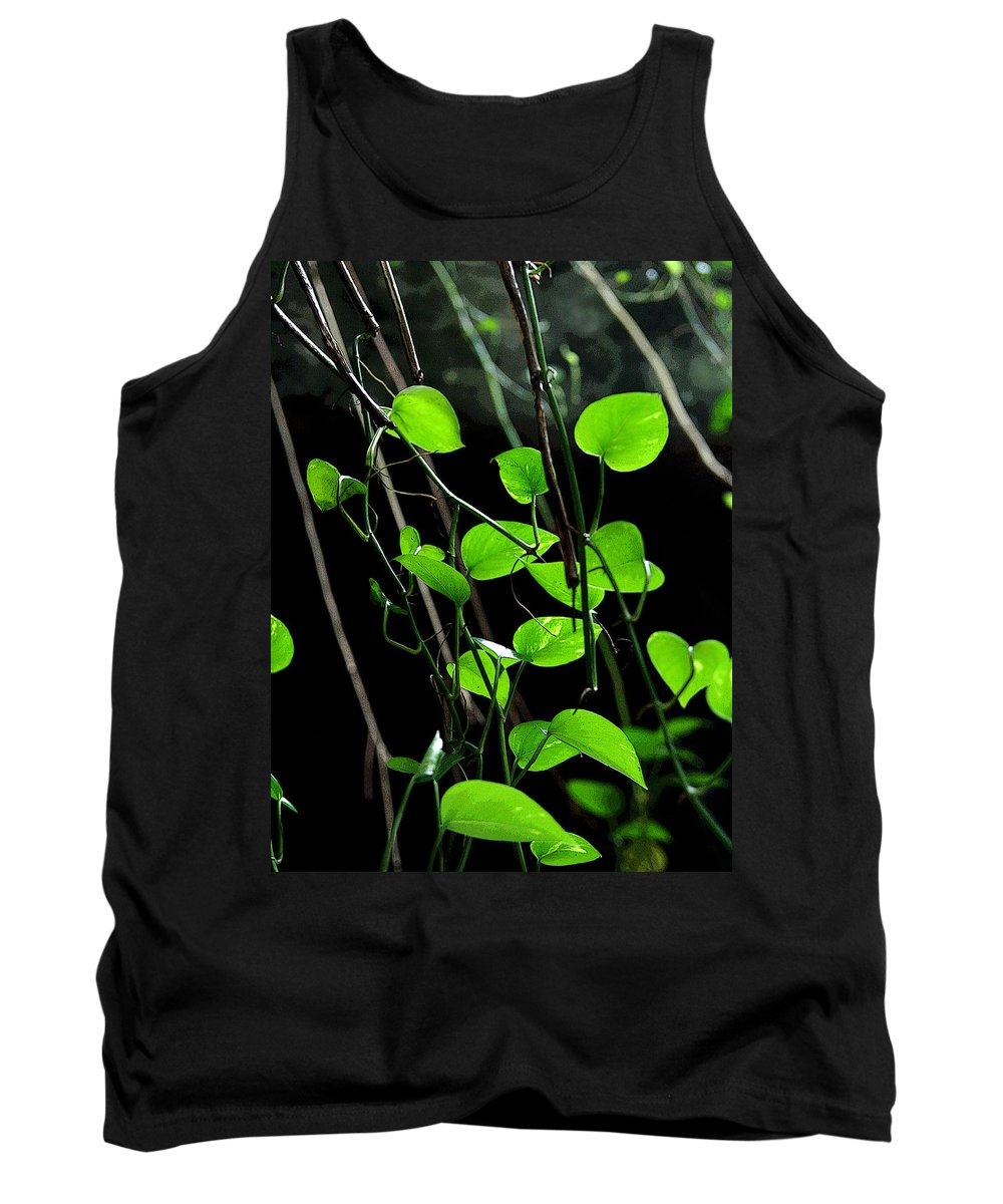 Plants Tank Top featuring the photograph Hanging Vines by Joe Kozlowski