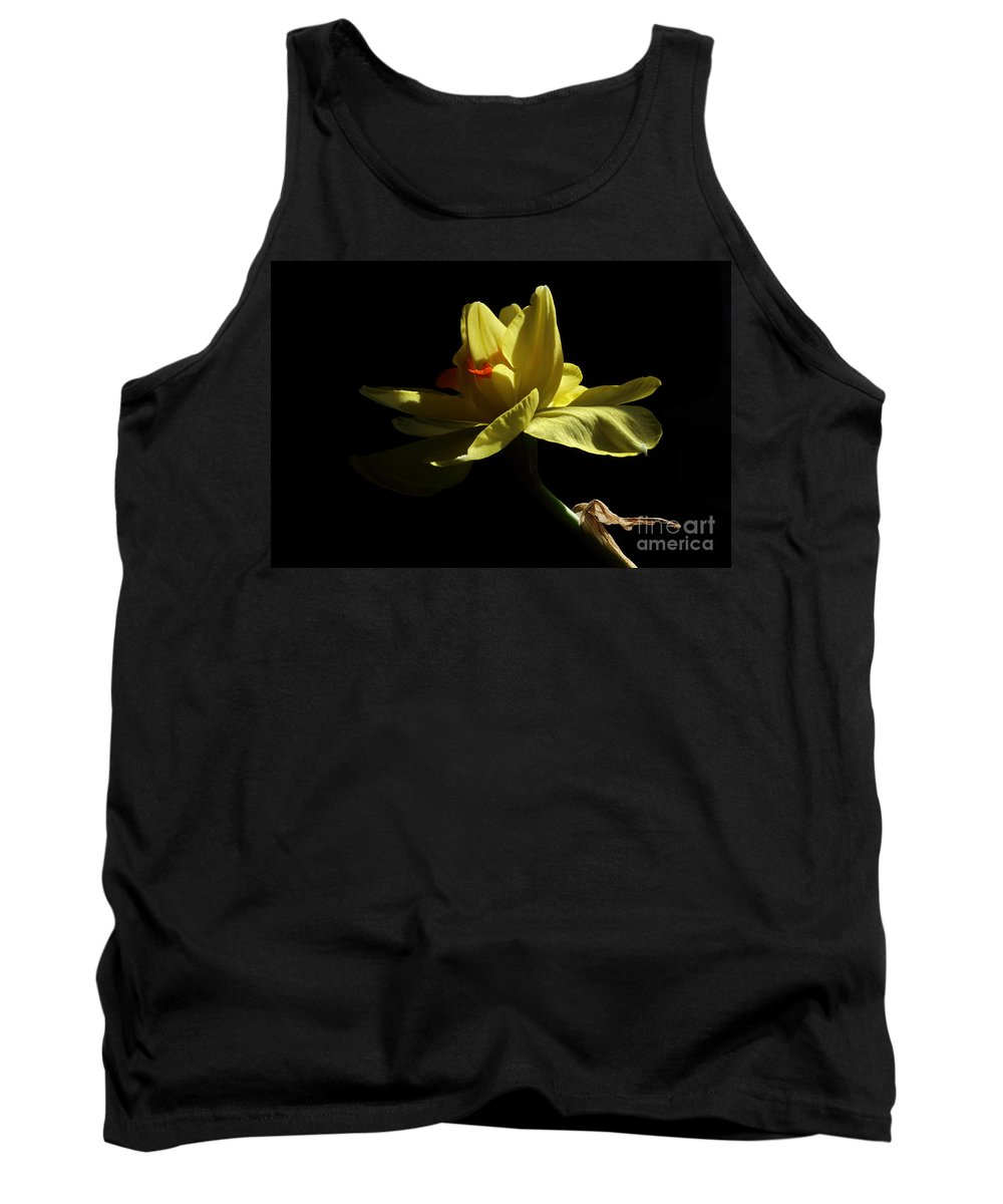 Yellow Daffodil Tank Top featuring the photograph Healing by Michael Eingle