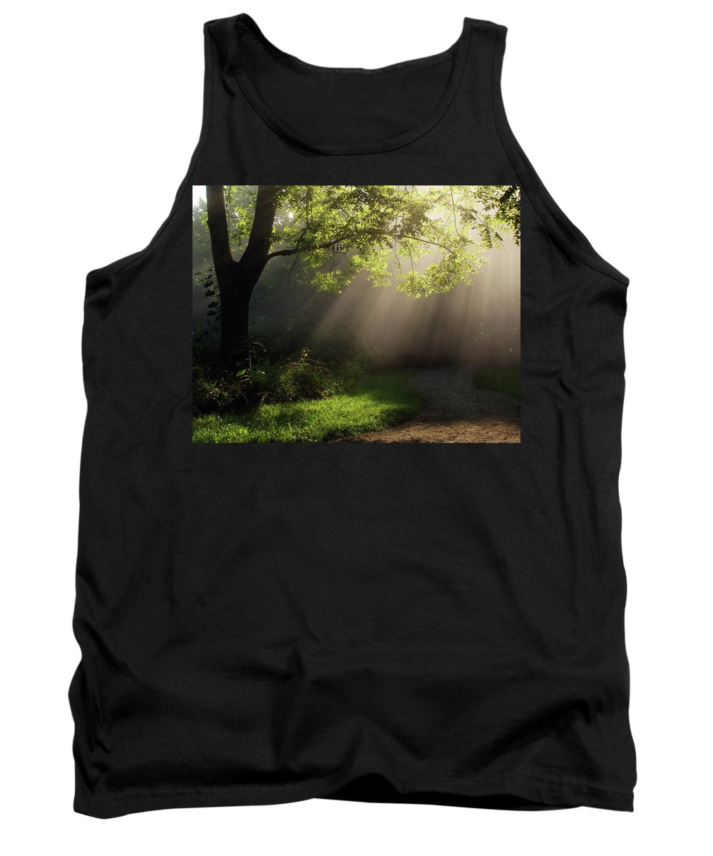 Tree Tank Top featuring the photograph Heavenly Rays by Douglas Stucky