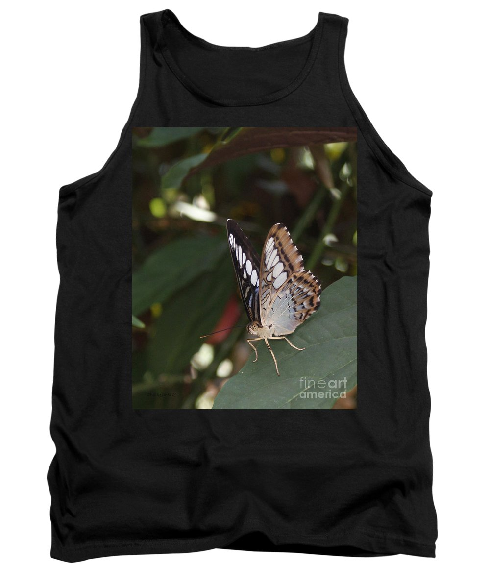 Butterfly Tank Top featuring the photograph Hints Of Blue by Shelley Jones