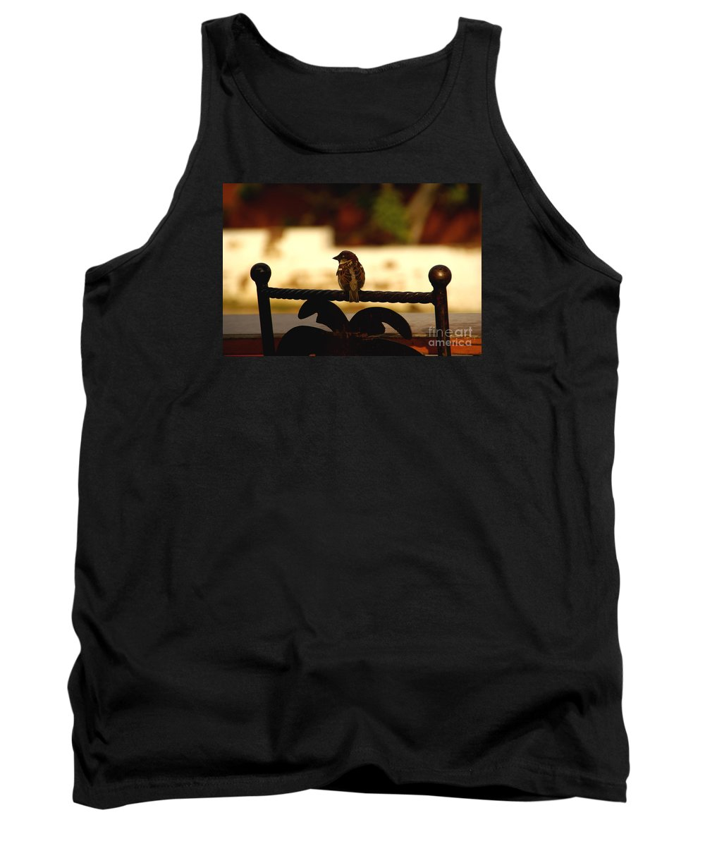 Bird Tank Top featuring the photograph His Eye Is On The Sparrow by Linda Shafer