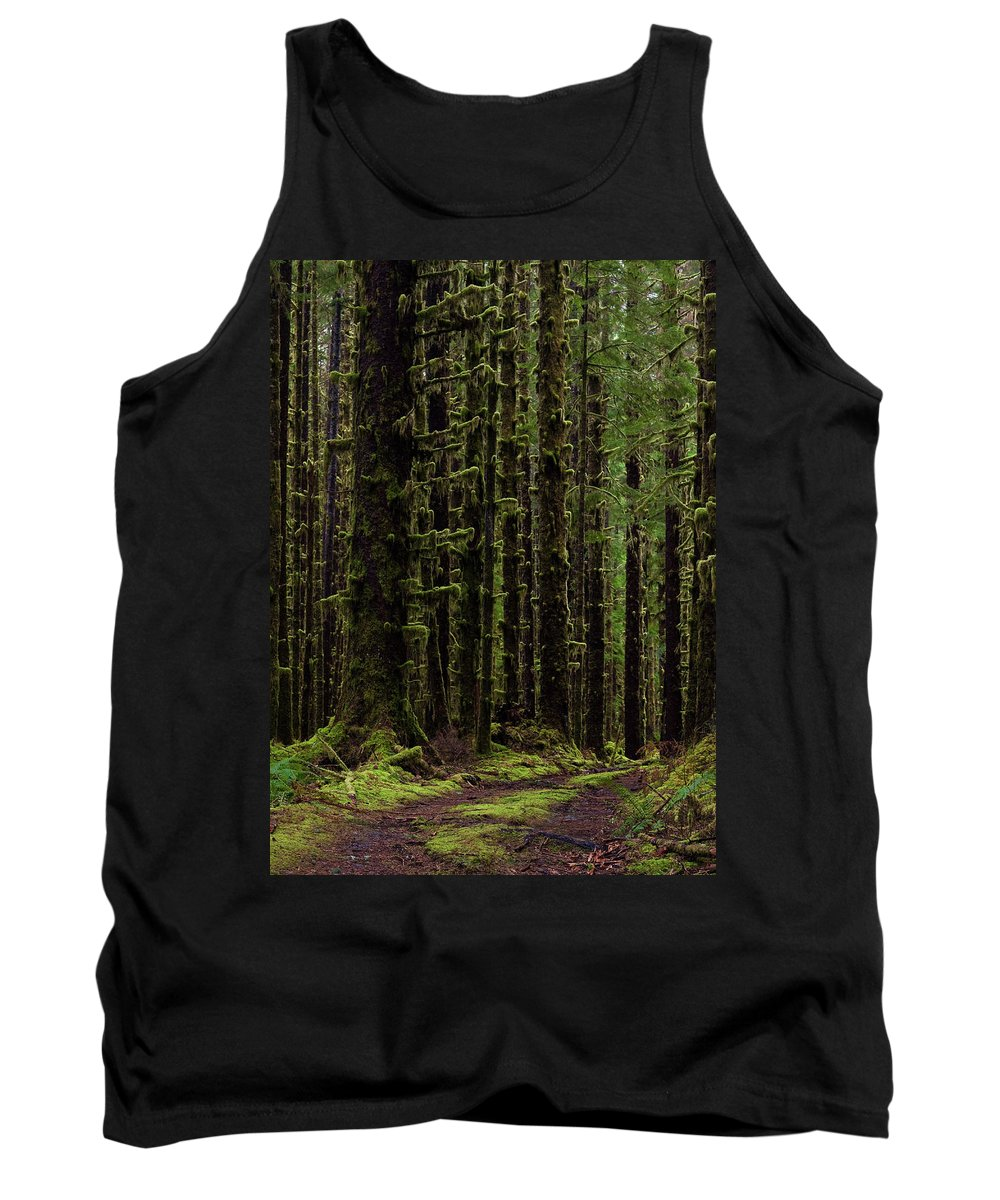Hoh Tank Top featuring the photograph Homeward by Mike Reid