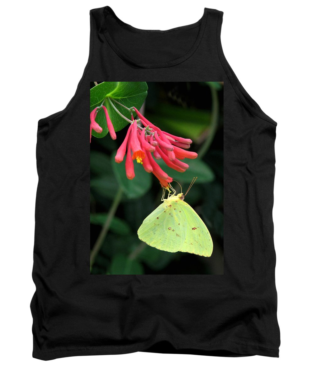Nature Tank Top featuring the photograph Honeysuckle Delight by Peg Urban