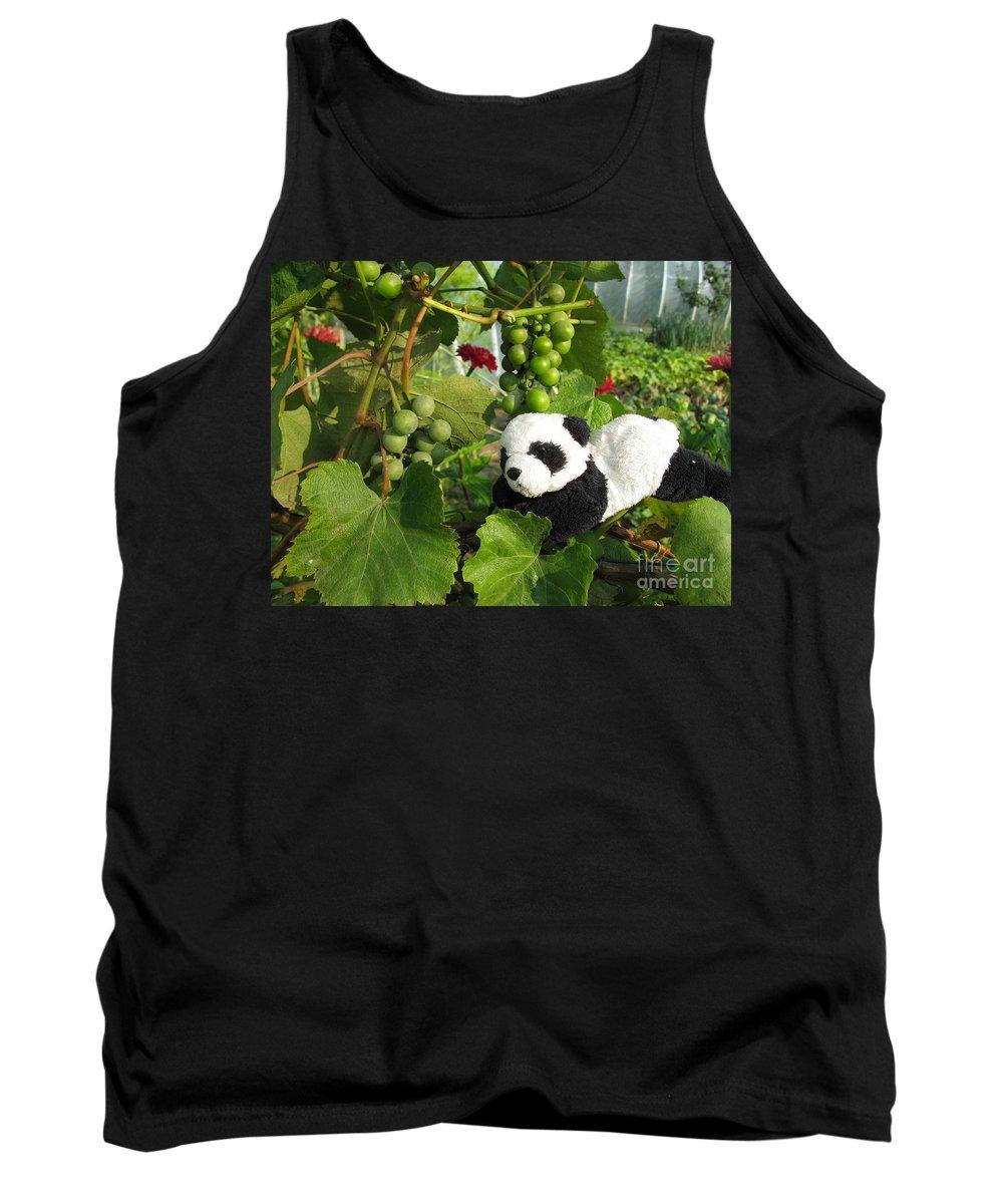 Baby Panda Tank Top featuring the photograph I Love Grapes Says The Panda by Ausra Huntington nee Paulauskaite
