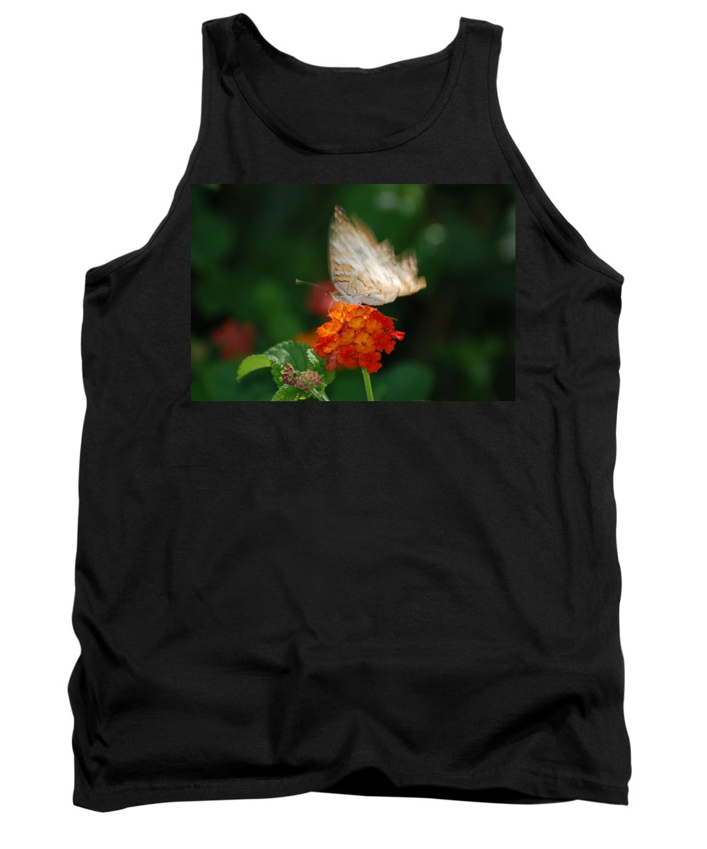Butterfly Tank Top featuring the photograph In Living Color by Rob Hans