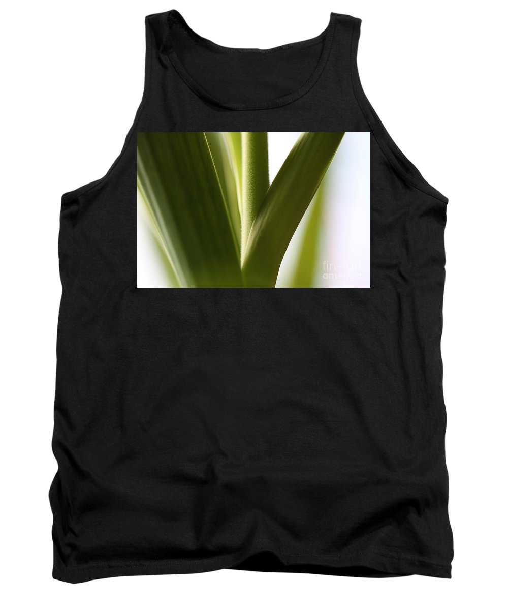 Leaves Tank Top featuring the photograph In The Spotlight Of Support by Amanda Barcon
