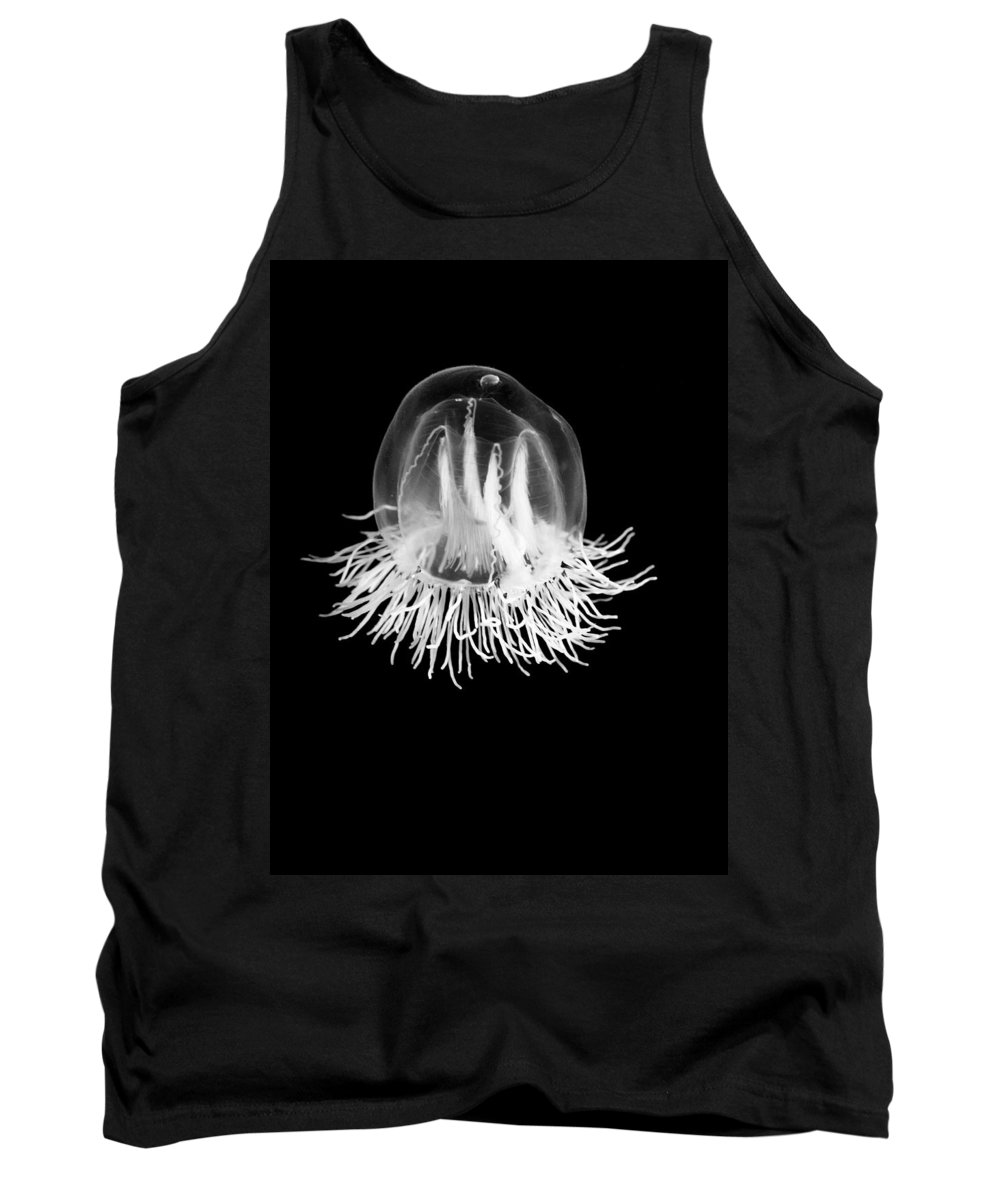 Animal Tank Top featuring the photograph Jellyfish Bell by Marilyn Hunt