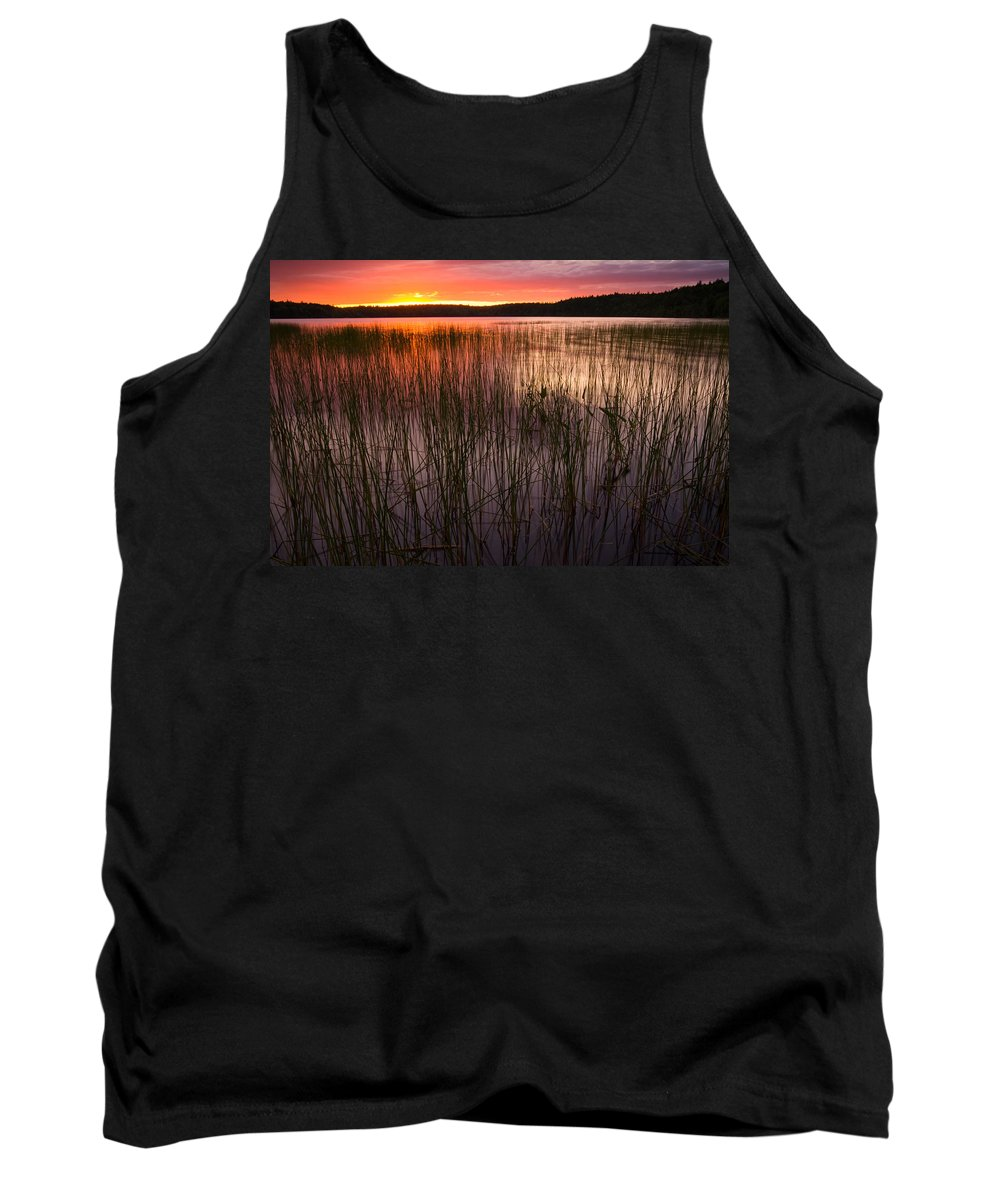 Lake Tank Top featuring the photograph Lake Reeds At Sundown by Irwin Barrett