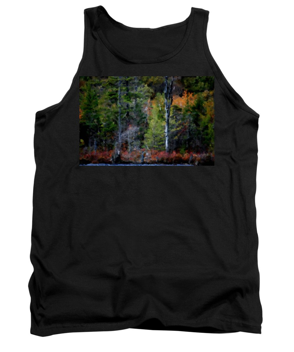 Digital Photograph Tank Top featuring the photograph Lakeside In The Autumn by David Lane