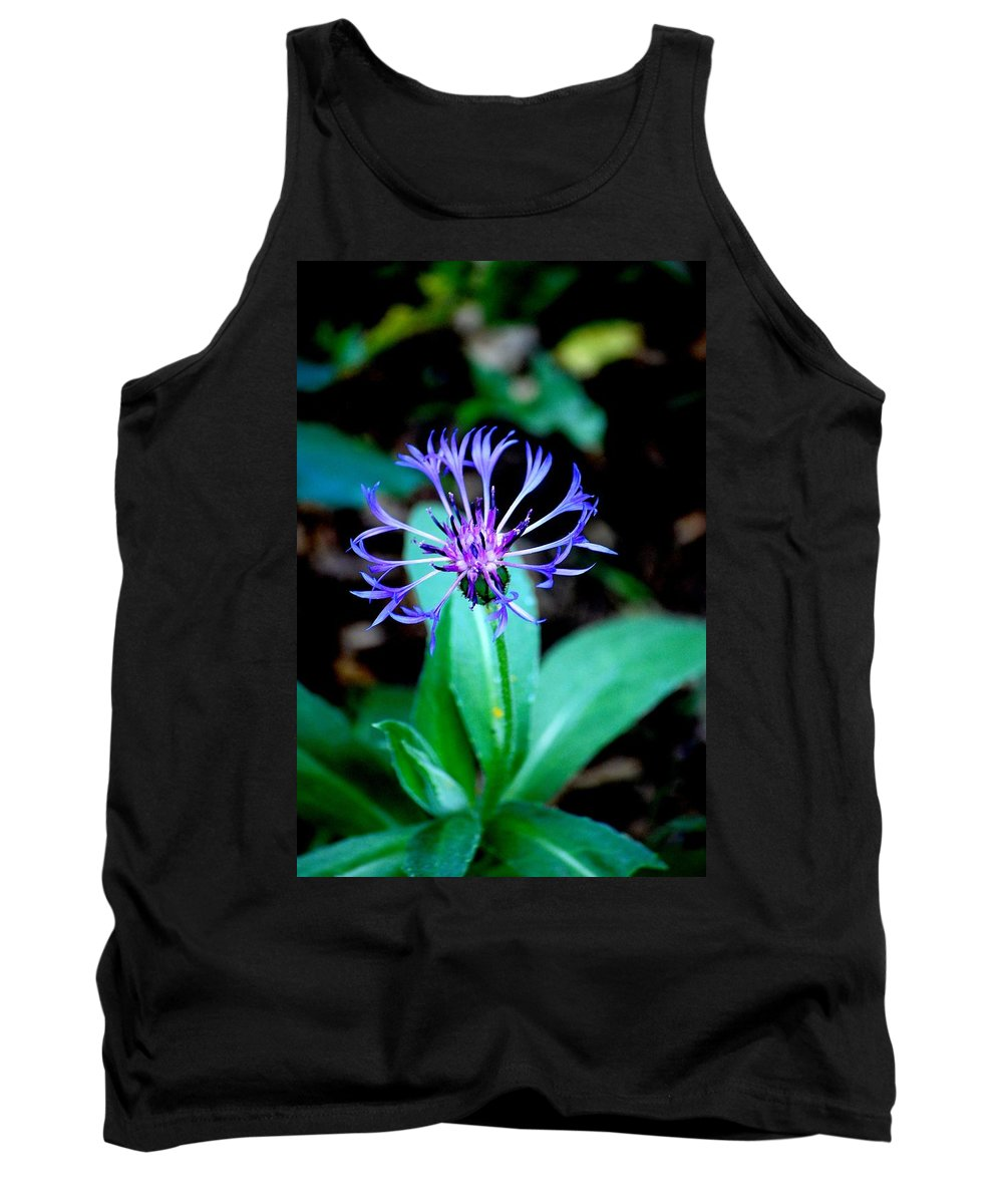 Digital Photograph Tank Top featuring the photograph Last Flower In The Garden by David Lane