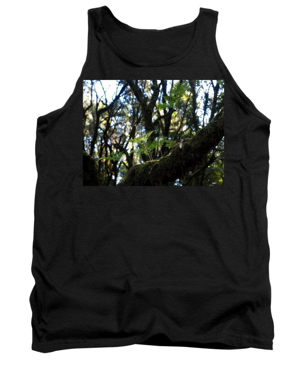 La Gomera Tank Top featuring the photograph Laurisilva 2 by Jouko Lehto