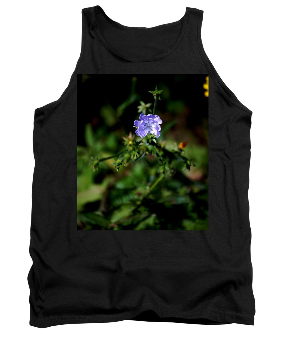 Digital Photograph Tank Top featuring the photograph Lavender Hue by David Lane