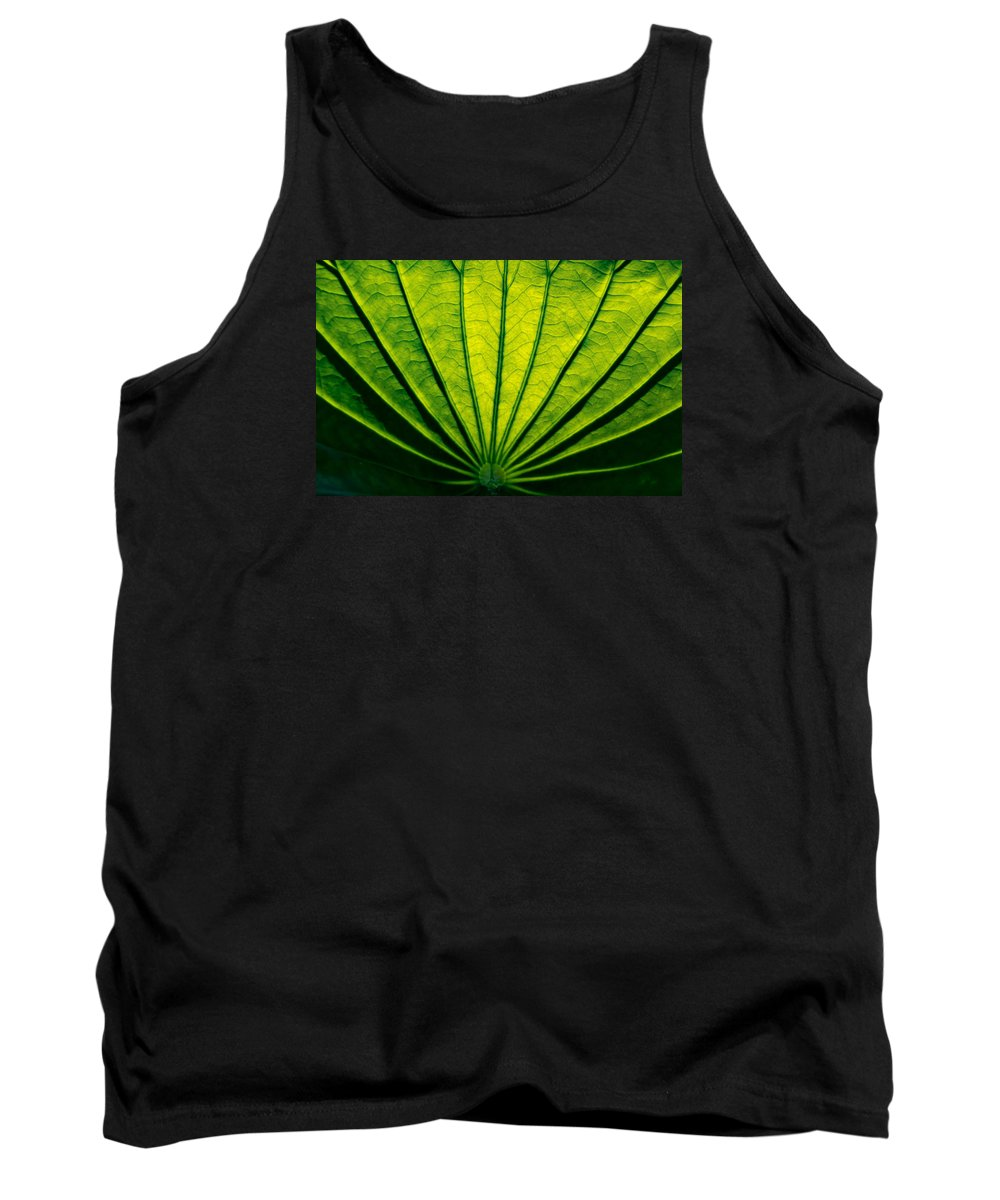 Leaf Tank Top featuring the photograph Leaf Veins by Carol Ward