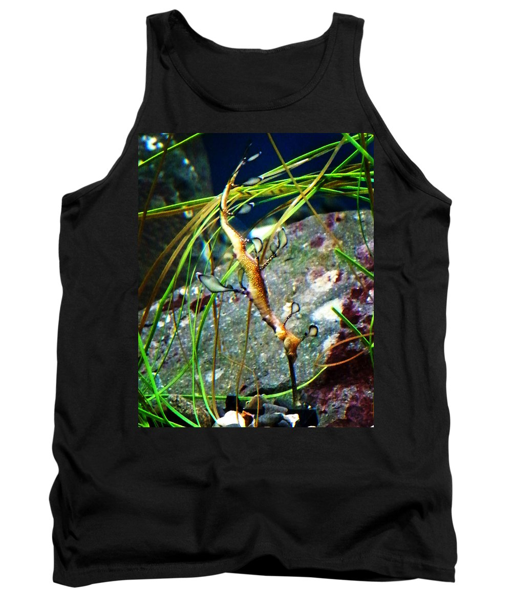 Paintings Tank Top featuring the photograph Leafy Sea Dragon by Anthony Jones