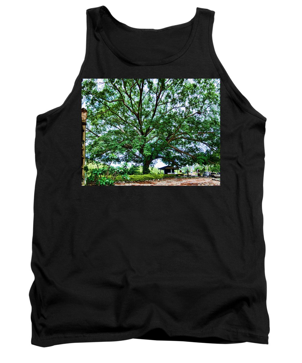 Tree Tank Top featuring the photograph Leafy Tree by Galeria Trompiz