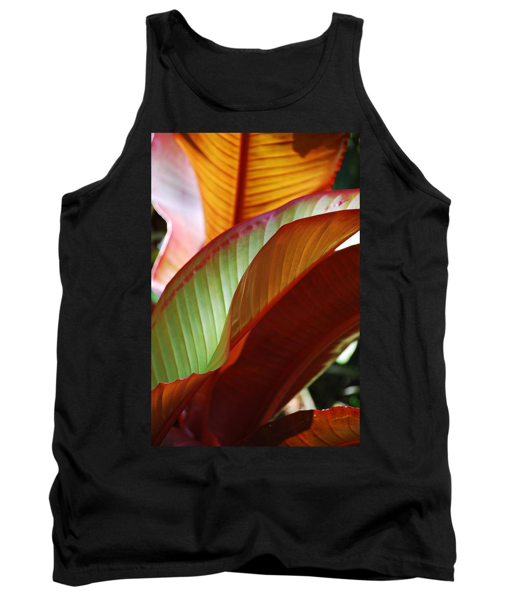 Leaves Tank Top featuring the photograph Leaves by Robert Meanor