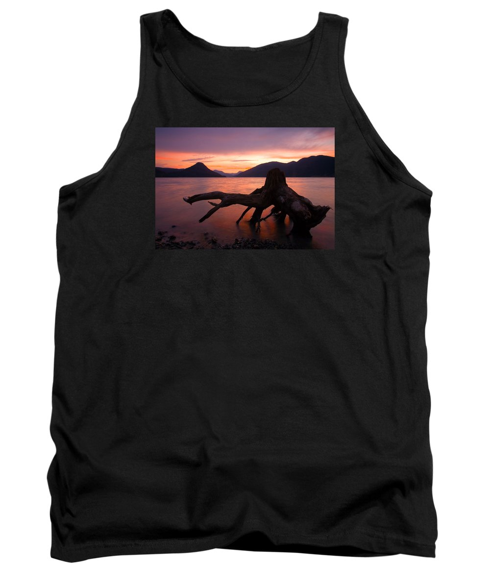 Stump Tank Top featuring the photograph Left Behind by Mike Dawson