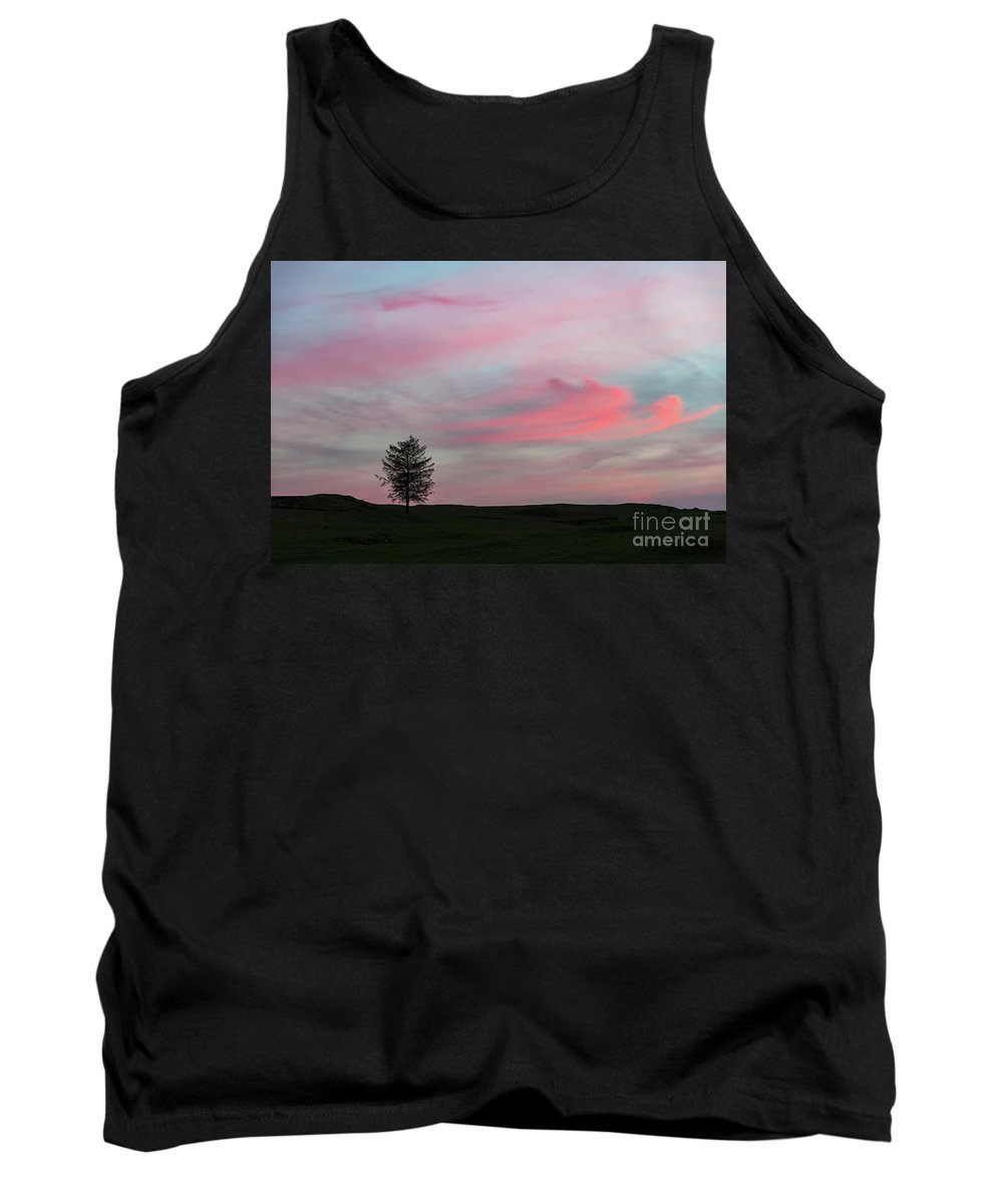 Tree Tank Top featuring the photograph Lone Tree Sunset by Alexis Manson