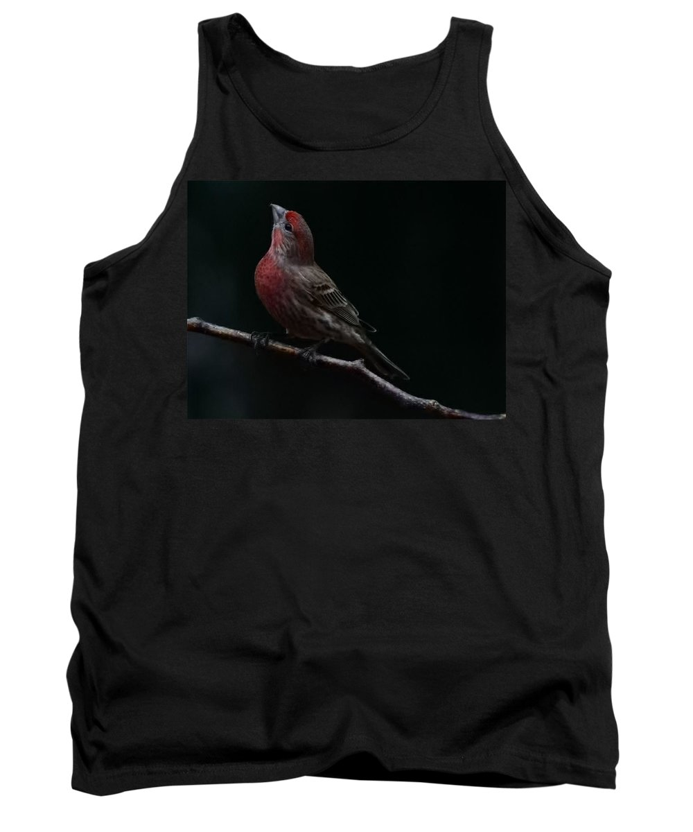 Finch Tank Top featuring the photograph Looking Towards Heaven by Gaby Swanson